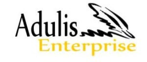Adulis-Enterprise-300x128